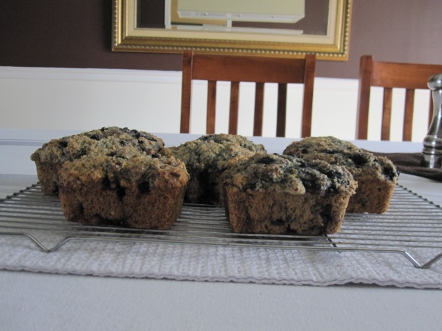 http://www.food.com/recipe/blueberry-buttermilk-muffins-6653